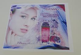 Fahnen-Stoffbanner, gedruckt mit 1,6 m (5 Fuß) Öko-Lösemitteldrucker WER-ES160 4
