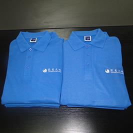 Individuelles Druckmuster für Polo-Shirts mit dem A3-T-Shirt-Drucker WER-E2000T